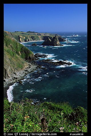 Cliffs and surf near Fort Bragg. Fort Bragg, California, USA (color)