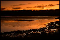Bolinas Lagoon, sunset. California, USA ( color)