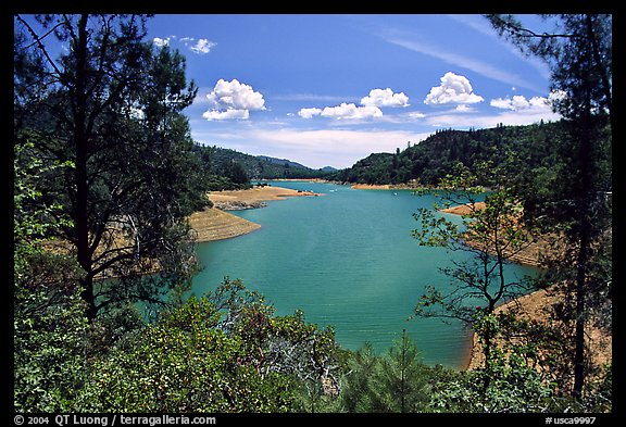 Shasta Lake, Wiskeytown-Shasta-Trinity National Recreation Area. California, USA (color)