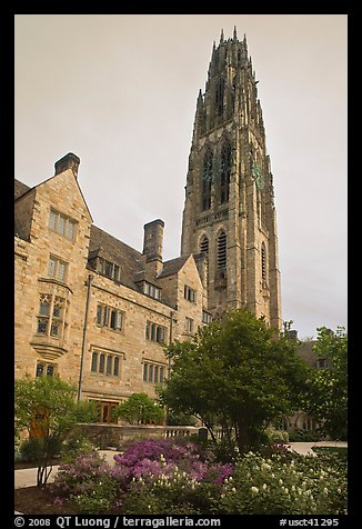Harkness Tower. Yale University, New Haven, Connecticut, USA (color)