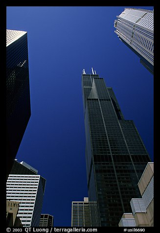 Upwards views of Sears tower and  skyscrappers. Chicago, Illinois, USA (color)