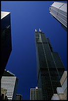 Upwards views of Sears tower and  skyscrappers. Chicago, Illinois, USA ( color)