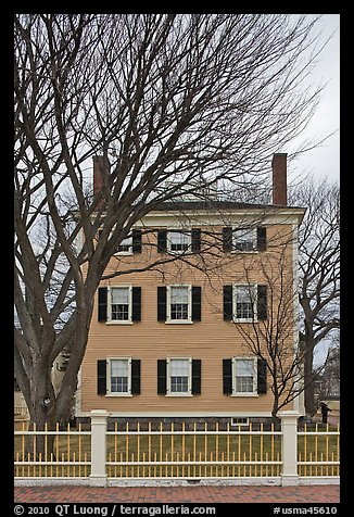 Bare trees and Hawkes House, Salem Maritime National Historic Site. Salem, Massachussets, USA (color)