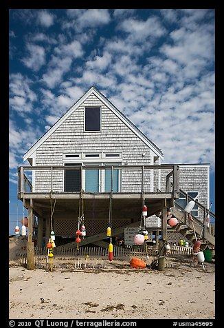 Beach House Truro Cape Cod Machussets Usa