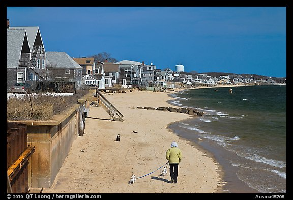 Woman walking two dogs on beach in winter, Provincetown. Cape Cod, Massachussets, USA (color)