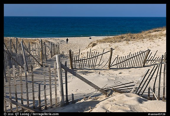 Sand Fence, tourist, and ocean late afternoon, Cape Cod National Seashore. Cape Cod, Massachussets, USA (color)