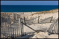 Sand Fence, tourist, and ocean late afternoon, Cape Cod National Seashore. Cape Cod, Massachussets, USA ( color)