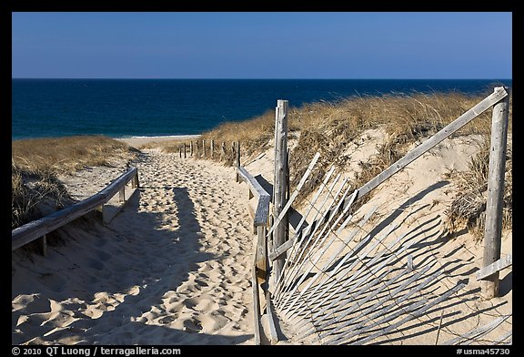 Path to beach and ocean framed by sand fences, Cape Cod National Seashore. Cape Cod, Massachussets, USA (color)