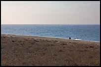 Distant couple on beach, Cape Cod National Seashore. Cape Cod, Massachussets, USA ( color)