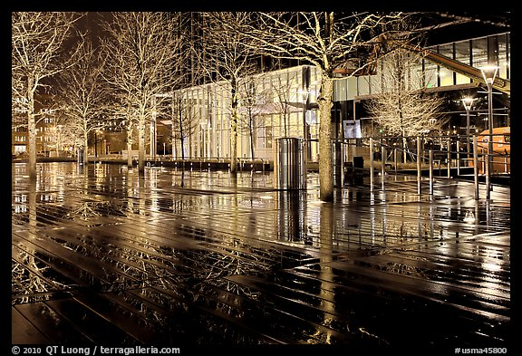 Trees reflected on boardwalk, and modern building at night. Boston, Massachussets, USA (color)