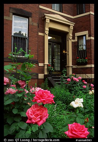 Flowers and brick houses on Beacon Hill. Boston, Massachussets, USA