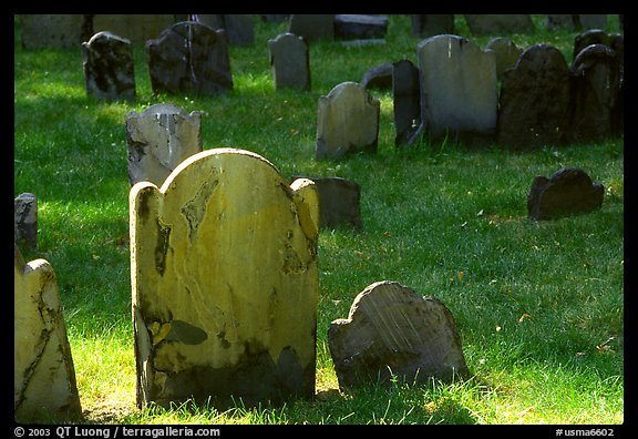 Tombstones in Copp Hill cemetery. Boston, Massachussets, USA (color)