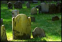 Tombstones in Copp Hill cemetery. Boston, Massachussets, USA ( color)
