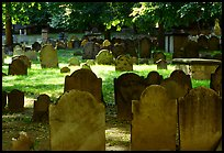 Old headstones in Copp Hill cemetery. Boston, Massachussets, USA ( color)