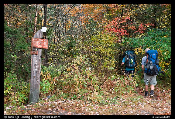 Backpackers hiking into autumn woods at Appalachian trail marker. Maine, USA (color)