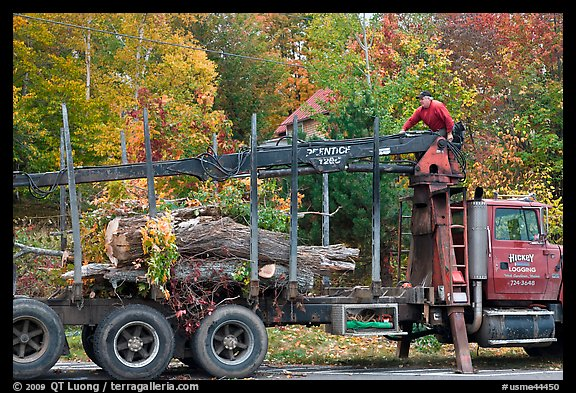 Tree pruning truck, Rockwood. Maine, USA (color)