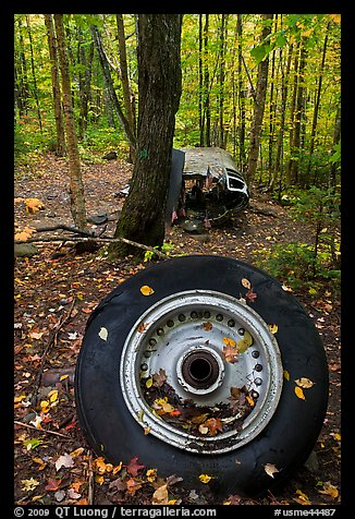 Wheel and fuselage part from crashed B-52 in forest. Maine, USA (color)