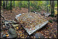 Pieces of B-52 wreckage lie scattered on Elephant Mountain. Maine, USA ( color)
