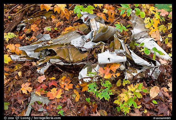 Autumn leaves and cluster of mangled aluminum from B-52 crash. Maine, USA (color)