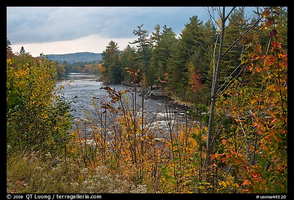 Penobscot River in the fall. Maine, USA (color)