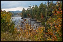 Penobscot River in the fall. Maine, USA