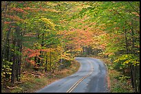 Fall foliage and road near entrance of Baxter State Park. Baxter State Park, Maine, USA