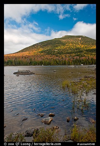 Forested mountain with fall foliage and pond. Baxter State Park, Maine, USA (color)