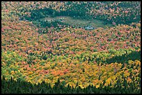 Mixed forest, meadow and pond seen from above. Baxter State Park, Maine, USA ( color)