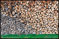 Wall of firewood, Millinocket. Maine, USA (color)