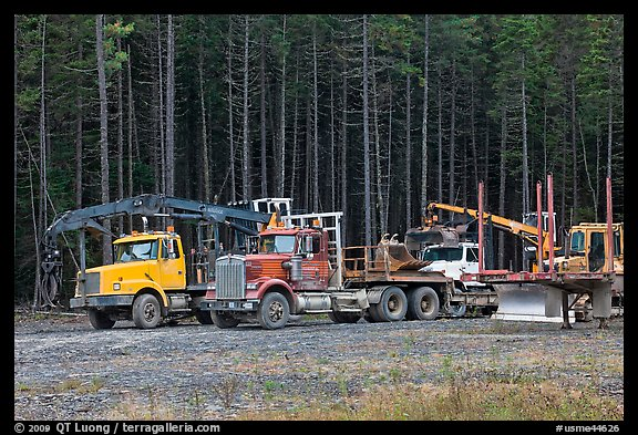 Forestry vehicles in a clearing. Maine, USA