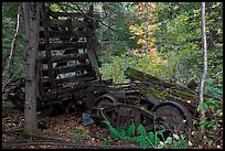 Remnants of railroad cars in the forest. Allagash Wilderness Waterway, Maine, USA ( color)