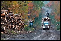 Log truck loaded on forestry road. Maine, USA (color)