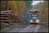 Log truck drives by pile of tree trunks. Maine, USA (color)
