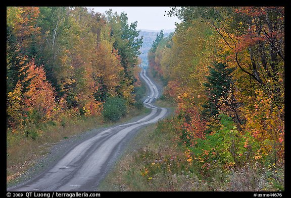 North Woods in autumn with twisting unimproved road. Maine, USA (color)