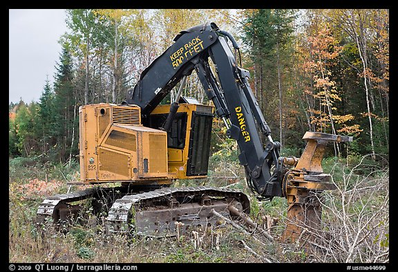 Tracked forest harvester. Maine, USA (color)