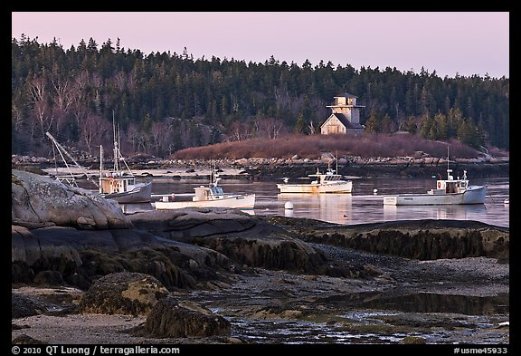 Fishing boats and forest. Stonington, Maine, USA (color)