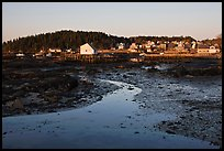 Tidal flats and houses, sunrise. Stonington, Maine, USA ( color)
