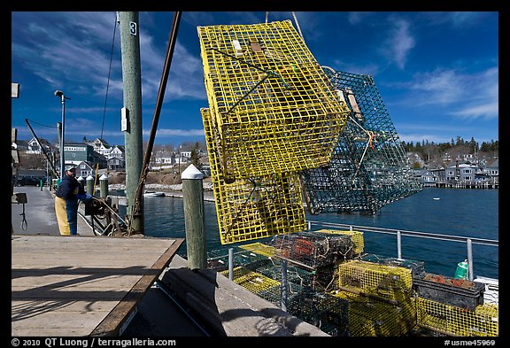 Lobsterman loading lobster traps. Stonington, Maine, USA (color)