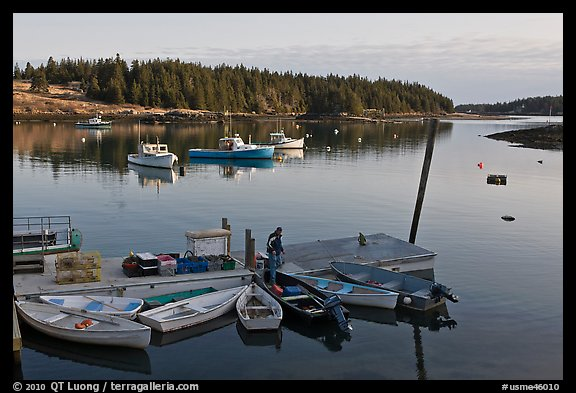 Harbor, early morning. Isle Au Haut, Maine, USA (color)