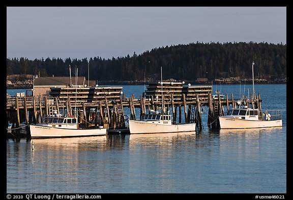Lobster boats and wharf. Stonington, Maine, USA (color)