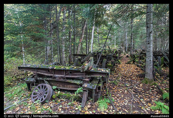 Rusting railway equipment in the woods. Allagash Wilderness Waterway, Maine, USA (color)