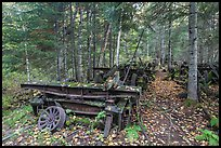 Rusting railway equipment in the woods. Allagash Wilderness Waterway, Maine, USA ( color)