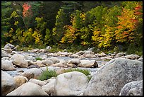 Huge boulders and Wassatotaquoik Stream in autumn. Katahdin Woods and Waters National Monument, Maine, USA ( color)