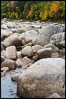 Boulders and Wassatotaquoik Stream in the fall. Katahdin Woods and Waters National Monument, Maine, USA ( color)