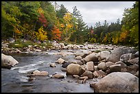 Wassatotaquoik Stream flowing past boulders. Katahdin Woods and Waters National Monument, Maine, USA ( color)