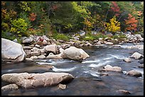 Wassatotaquoik Stream in autumn. Katahdin Woods and Waters National Monument, Maine, USA ( color)