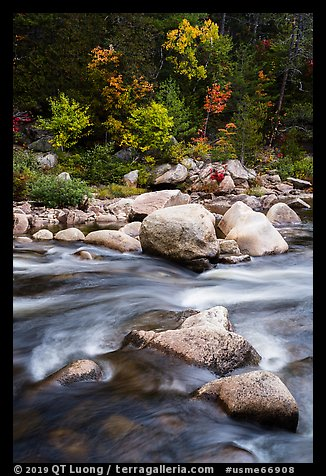 Rapids of Wassatotaquoik Stream at Orin Falls. Katahdin Woods and Waters National Monument, Maine, USA (color)