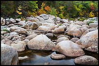Boulders, Wassatotaquoik Stream near Orin Falls, autumn. Katahdin Woods and Waters National Monument, Maine, USA ( color)