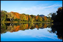 Morning reflections of trees in autumn foliage and mountain, Branch Penobscot River. Katahdin Woods and Waters National Monument, Maine, USA ( color)