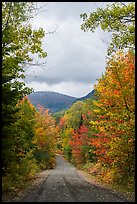 Road and mountain in autumn. Katahdin Woods and Waters National Monument, Maine, USA ( color)